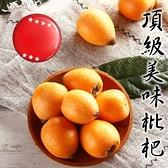 【果之蔬-全省免運】台灣嚴選枇杷XL號X1盒 15-18入(500g±10%含盒重/盒)