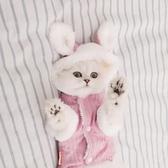 貓衣服 小貓咪衣服英短美短布偶貓貓寵物貓用品冬天保暖可愛秋冬季的冬裝【快速出貨】