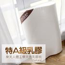枕頭 / 乳膠枕【樂芙人體工學乳膠枕】含...
