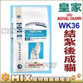 ◆MIX米克斯◆代購皇家貓飼料. 【WK32】.7-10歲結紮過之老貓 1.5kg.VET疾病預防頂級飼料