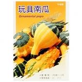 蔬菜種子-玩具南瓜