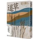道草(孤獨與迷茫的極致臨摹.夏目漱石創作生涯唯一自傳體小說)