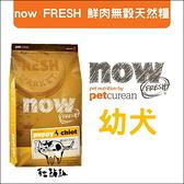 Now〔鮮肉無穀幼犬配方,12磅,加拿大製〕(活動優惠價)