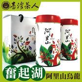 台灣茶人 回甘烏龍-奮起阿里山風味  超值茶葉禮盒(自然好茗系列)