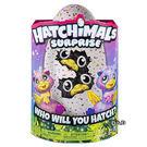 【HATCHIMALS】魔法寵物蛋 - 雙胞胎遊戲組 ( 粉橘、藍紫蛋殼2種 )╭★ JOYBUS玩具百貨
