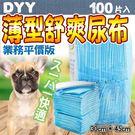 【培菓平價寵物網】dyy平價薄型舒爽業務尿布100入(30*45cm)