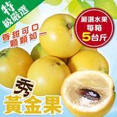 【果之蔬-全省免運】台灣黃金果X5斤±10%(含箱重)