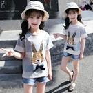 *╮小衣衫S13╭*中大童寬條小兔子蝴蝶結短袖T恤1070524