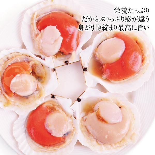 【超值免運】極鮮半殼扇貝3包組(325公克/1包)