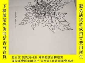 二手書博民逛書店愛沙尼亞罕見28 5 2002Y9766 出版2002