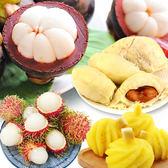 泰國鮮凍綜合水果(紅毛丹+山竹+乳香青尼+龍王鳳梨/共四件)