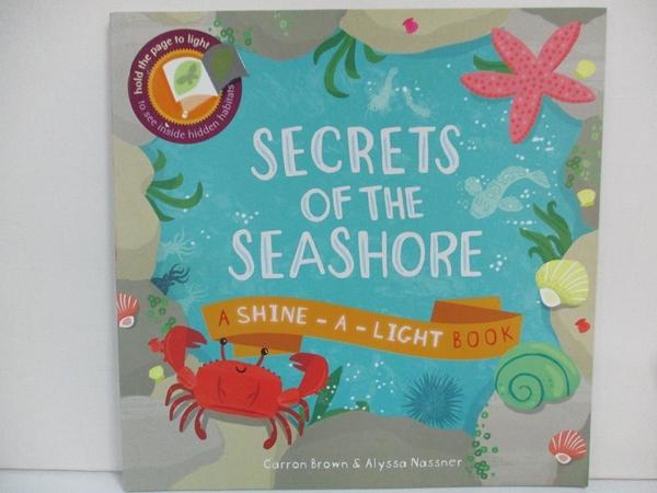 【書寶二手書T1/少年童書_DZL】Secrets of the Seashore (Shine-A-Light)