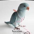玄鳳鸚鵡牽引繩鸚鵡放飛繩不傷腳訓練遛鳥繩超輕飛行帶腳鍊腳環 快速出貨