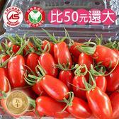 特瑪多有機玉女小蕃茄2台斤含運組
