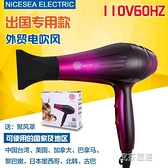 現貨 吹風機110V電吹風出口出國專用個人護理頭髮電風筒60HZ恒風110伏電 【恭賀新春】