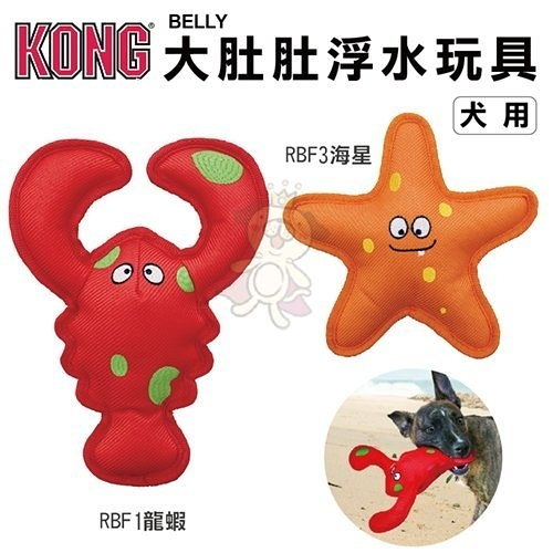 『寵喵樂旗艦店』美國KONG《Belly Flops大肚肚浮水玩具-龍蝦│海星》犬玩具