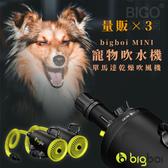 【3台超值組】bigboi MINI 寵物單馬達吹風機 低噪音 寵物吹水機 吹風機 汽機車可用 恆溫設計