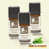 【Sylvia】德國原裝進口天然草本薄荷單方精油5ML/3瓶入