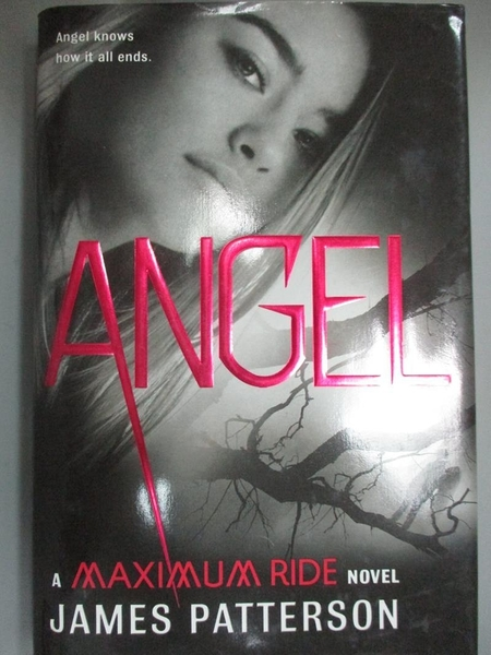 【書寶二手書T5/一般小說_C1E】Angel: A Maximum Ride Novel_Patterson, Jam
