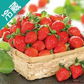 台灣特號草莓/盒(400g±5%/盒)【愛買冷藏】