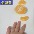 砂糖橘 12月水果花蓮鶴岡無毒農業 7斤...