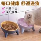 快速出貨貓碗狗碗貓食盆保護頸椎防打翻斜口喝水小型犬貓咪盆飯碗寵物