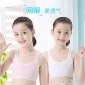 女童內衣小背心發育期9-10-12歲大童13文胸抹胸15小學生女孩 海角七號