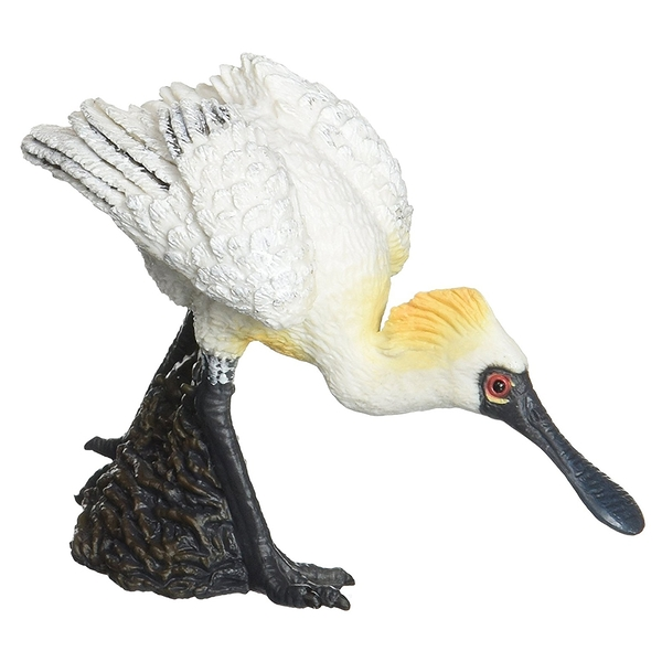 【永曄】collectA 柯雷塔A-英國高擬真動物模型-飛禽動物系列-黑面琵鷺 (走路)