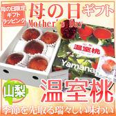 【果之蔬-全省免運】日本山梨縣產溫室水蜜桃(原裝盒1kg±10%/約5~6入)
