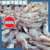 五星品質藍鑽蝦,300g/盒(約10尾),蝦肉緊緻甜度不輸活蝦