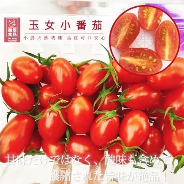 每盒123元起【果之蔬-全省免運】嚴選溫室玉女小番茄x1盒(300g±10%含盒重/盒)