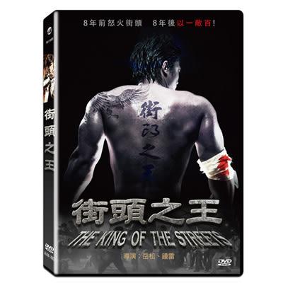 街頭之王DVD 岳松/李雨菲