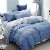 【金‧安德森】天絲床組《伯恩》兩用被床包四件組 (標準雙人)