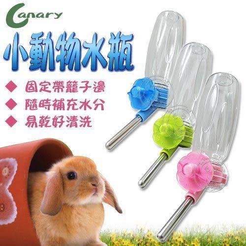 【 zoo寵物商城】Canary》小動物專用飲水瓶150ml (固定於籠子 )
