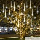 流星雨led燈七彩燈閃燈串燈滿天星戶外防水亮化掛樹上的裝飾樹燈 牛轉好運到