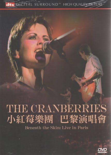 小紅莓樂團 巴黎演唱會 DVD THE CRANBERRIES JUST MY IMAGINATION ANIMAL INSTINCT PROMISE