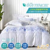 【Betrise頌嫻】加大300織紗100%天絲四件式兩用被床包組