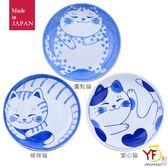 【日本美濃燒】藍貓8吋湯盤(圓點/線條/愛心) 單入 圓盤 淺盤碟 菜盤 | 輕食族野餐適用 | 堯峰陶瓷