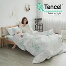 #HT035#絲柔親膚奧地利TENCEL天絲3.5尺單人床包+枕套二件組(不含被套)台灣製/萊賽爾Lyocell