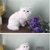 仿真動物貓咪兒童毛絨玩具會叫的貓貓玩偶寵物模型標本工藝品擺件 YXS 【全館免運】