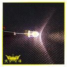 ◤大洋國際電子◢ 5mm透明殼 暖白光 高亮度LED (1000PCS入) 0627-WW LED 二極管