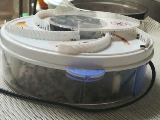 全自動電動捕蠅器除去驅蒼蠅的神器滅蒼蠅神器家用抓捕捉蒼蠅殺手台北日光