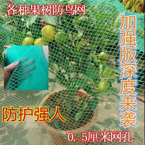 葡萄蔬菜家用網防鳥網果園