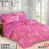 雙人加大【薄床包】6*6.2尺/加大/100%純棉˙加大床包『愛戀情人』御元居家-MIT