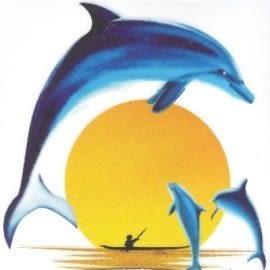 美飾夕陽海豚轉印膠片(6入)