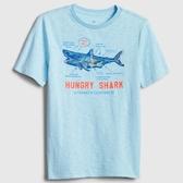 Gap男童棉質舒適圓領短袖T恤541074-天青藍