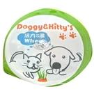 寵物野菜園活力之麥‧種植貓草盒 (50g)試吃包