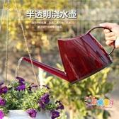 澆水壺 繽紛塑料澆花透明水壺家用透明樹脂園藝戶外便橢圓攜灑水壺 2色