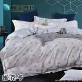 ✰吸濕排汗法式柔滑天絲✰ 雙人加大6尺薄床包兩用被(加高35CM) 《維克多》