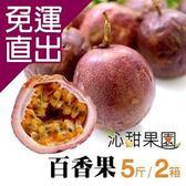沁甜果園SSN 高雄型農傳統百香果(5台斤/盒)(共2盒)E00900078【免運直出】